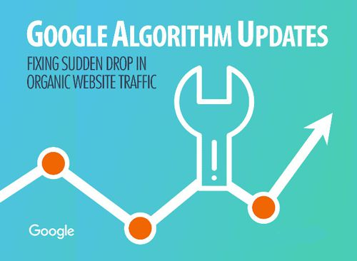 Google Algorithm SEO Auditing and Recovery Services